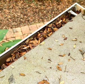 Gutter Cleaning - Blocked Gutters