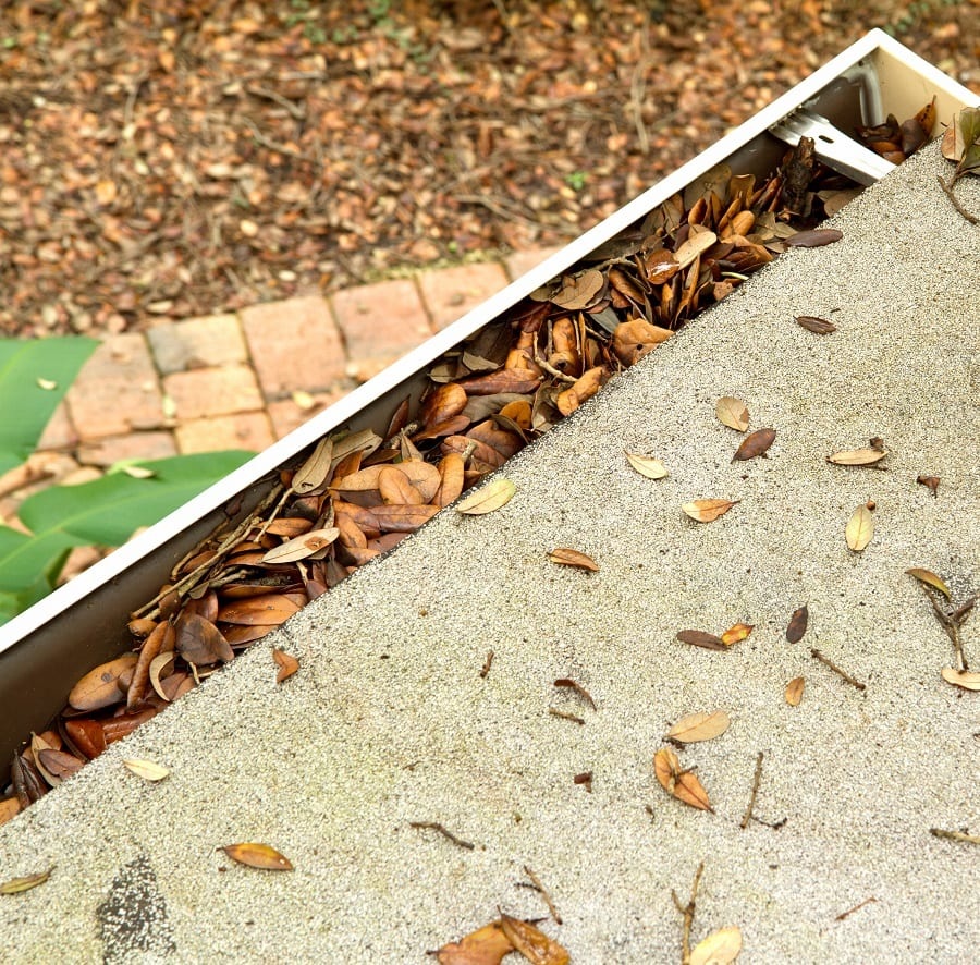Cleaning Gutters – What You Need to Know