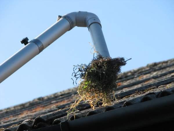 gutter cleaners nottingham